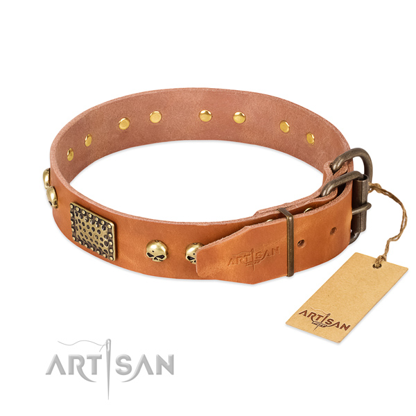 Rust-proof adornments on easy wearing dog collar