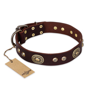 """Breath of Elegance"" FDT Artisan Decorated with Plates Brown Leather Pitbull Collar"