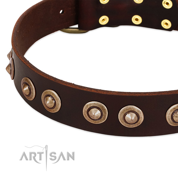 Corrosion resistant traditional buckle on full grain genuine leather dog collar for your dog