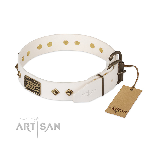 Full grain natural leather dog collar with rust-proof buckle and studs