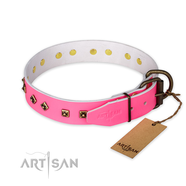 Durable traditional buckle on full grain natural leather collar for everyday walking your doggie