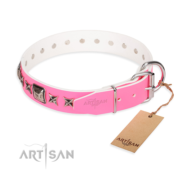Quality adorned dog collar of full grain natural leather