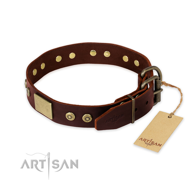 Rust-proof embellishments on handy use dog collar