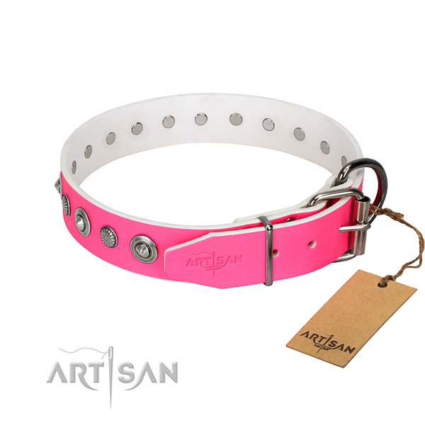 Strong full grain leather dog collar with inimitable decorations