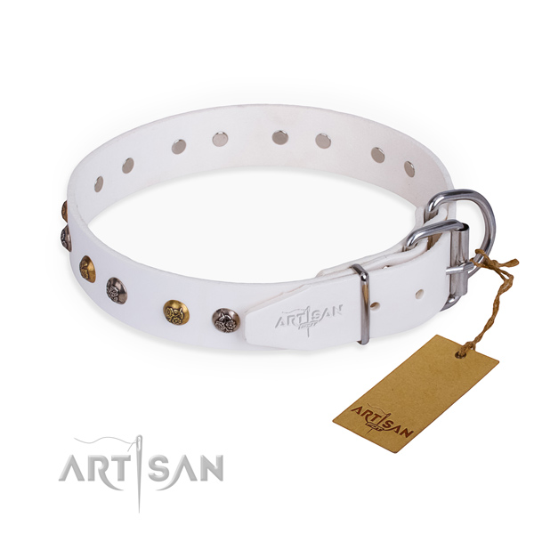Full grain leather dog collar with trendy rust resistant adornments