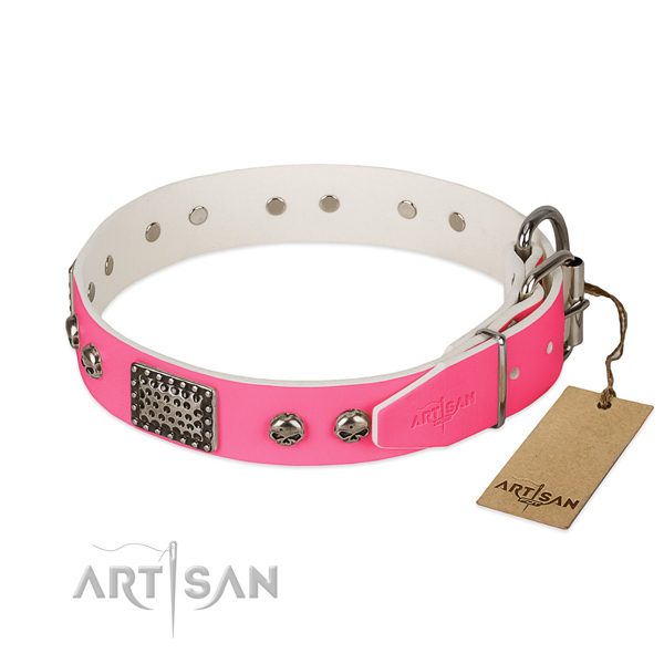 Corrosion proof decorations on daily walking dog collar