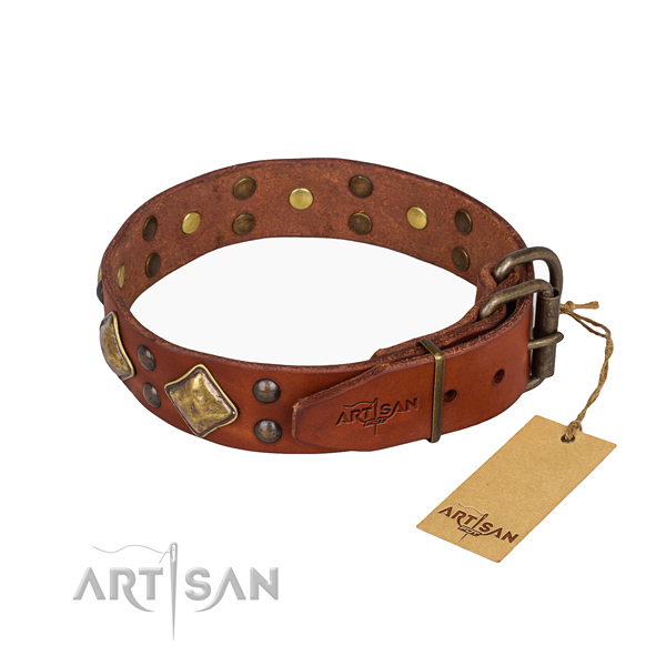 Leather dog collar with trendy corrosion resistant embellishments