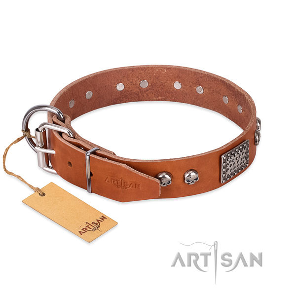 Rust resistant traditional buckle on everyday walking dog collar