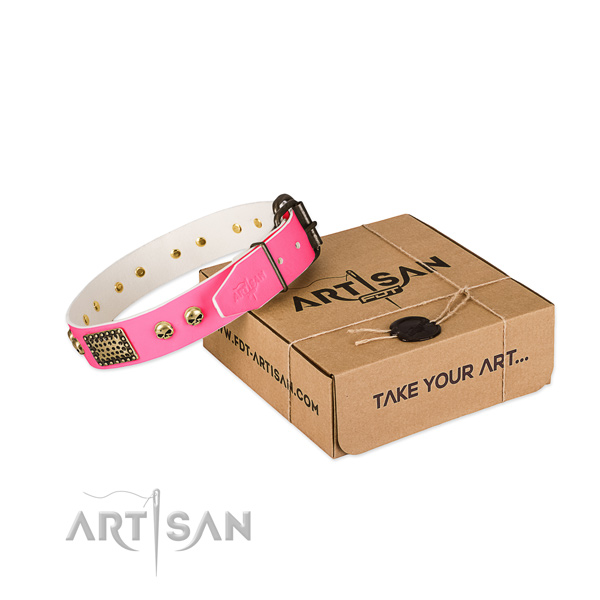 Corrosion proof adornments on dog collar for daily walking