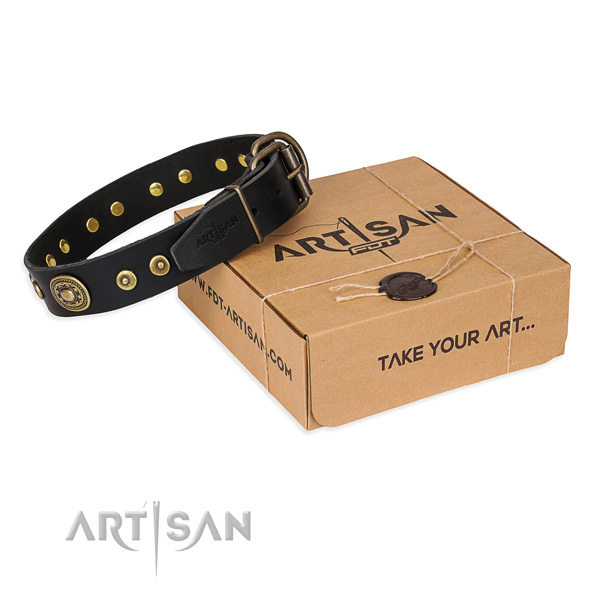 Full grain natural leather dog collar made of flexible material with durable fittings