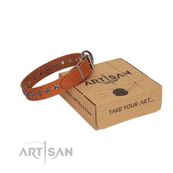 Daily walking dog collar of fine quality natural leather with adornments