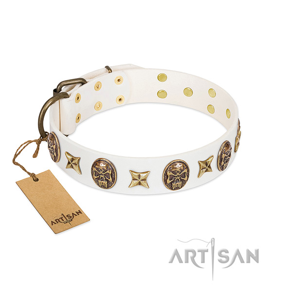 Embellished leather dog collar for daily walking