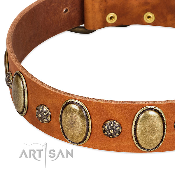 Easy wearing reliable genuine leather dog collar