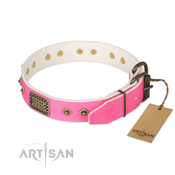 Rust resistant adornments on daily use dog collar