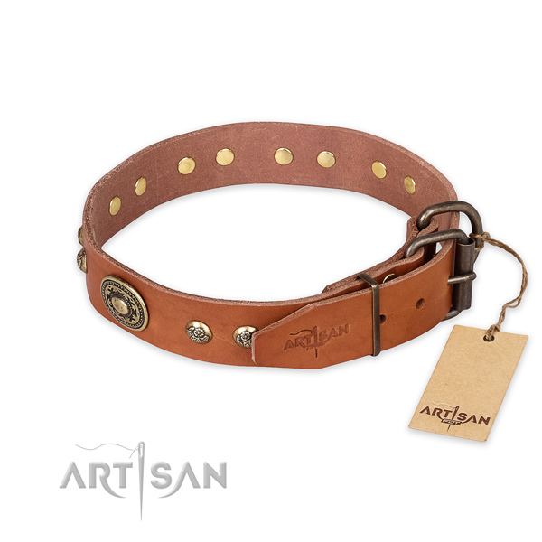 Corrosion resistant buckle on natural leather collar for everyday walking your pet