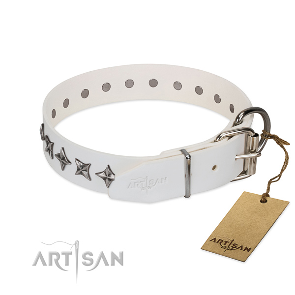 Top quality genuine leather dog collar with unusual decorations