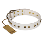 """Snow Cloud"" FDT Artisan White Leather Pitbull Collar with Square and Rhomb Studs"