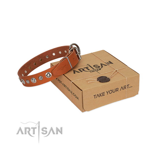 Reliable full grain leather dog collar with unique decorations