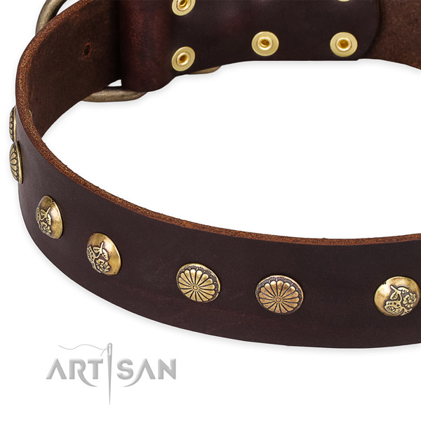 Genuine leather collar with durable D-ring for your lovely pet