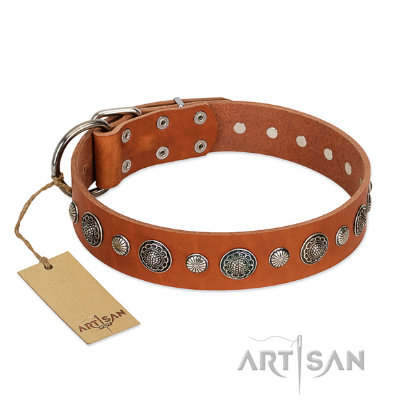 Quality full grain genuine leather dog collar with corrosion resistant hardware