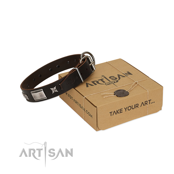 Extraordinary collar of full grain genuine leather for your stylish four-legged friend