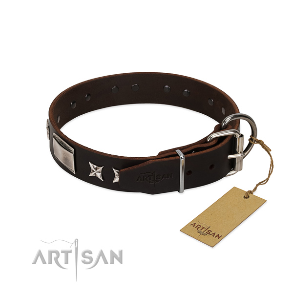 Best quality collar of leather for your handsome canine