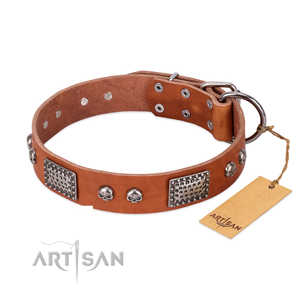 Easy adjustable full grain natural leather dog collar for walking your dog