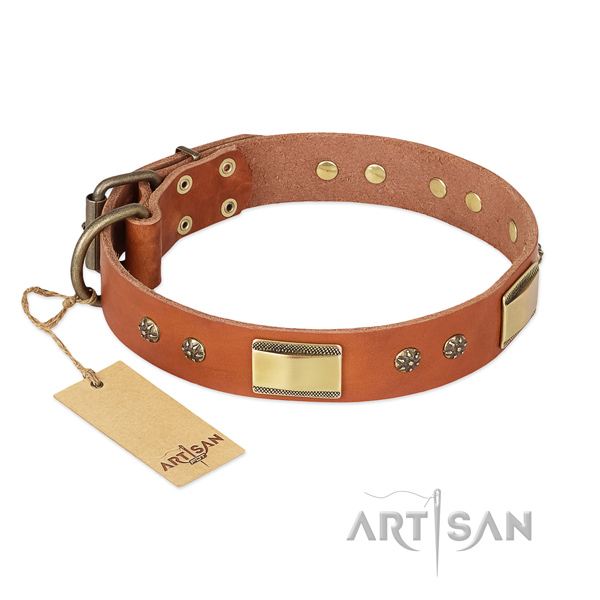 Fine quality leather collar for your pet