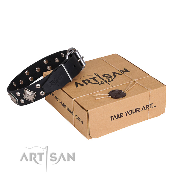 Handy use dog collar with Significant durable embellishments