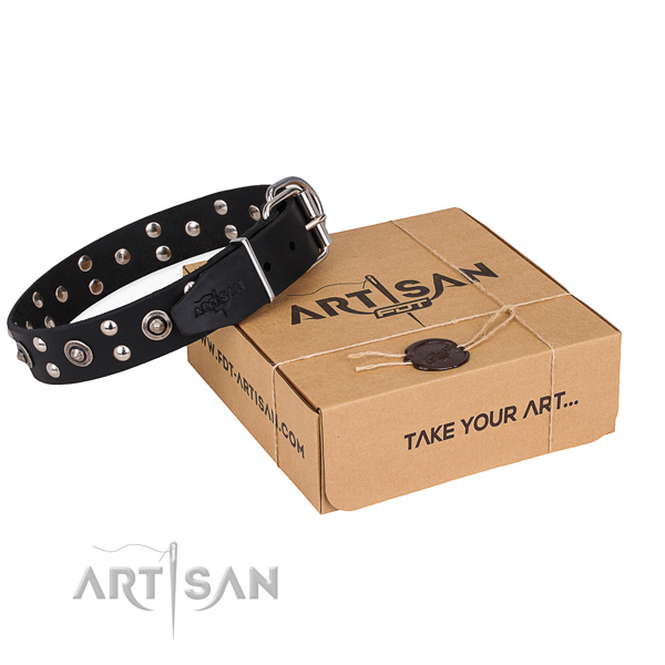 Comfortable wearing dog collar with Fashionable strong adornments