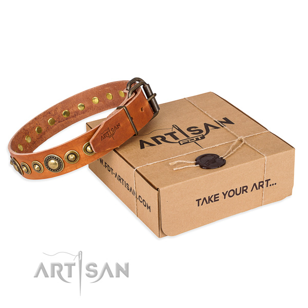 Top notch genuine leather dog collar handmade for everyday walking