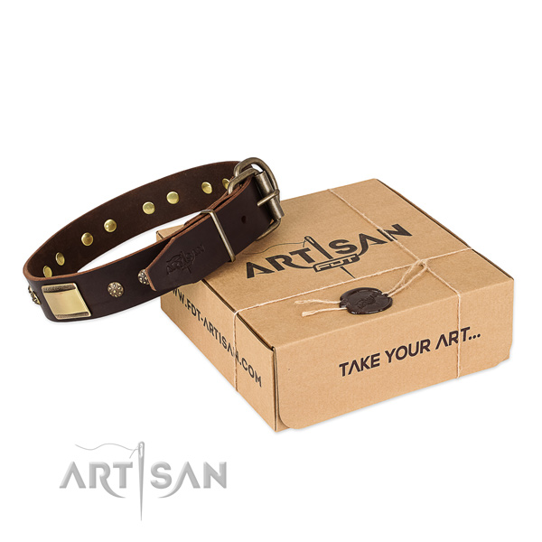 Comfortable full grain leather collar for your attractive canine