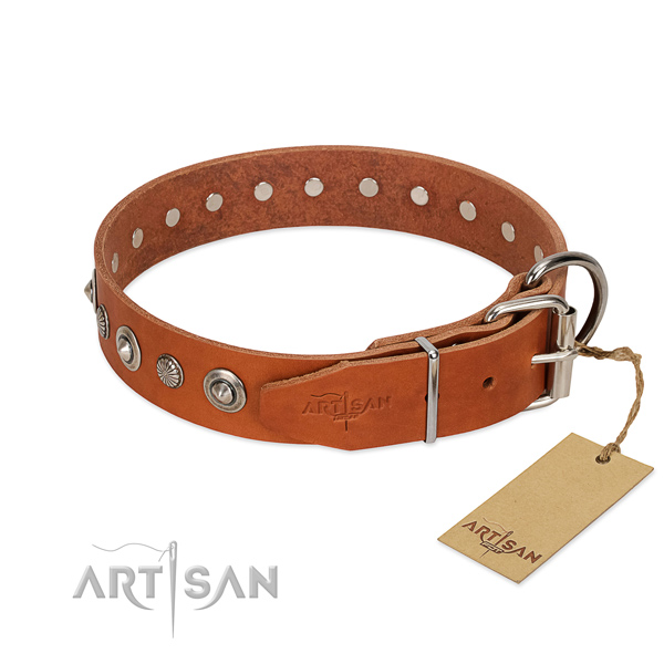 Top quality leather dog collar with impressive studs