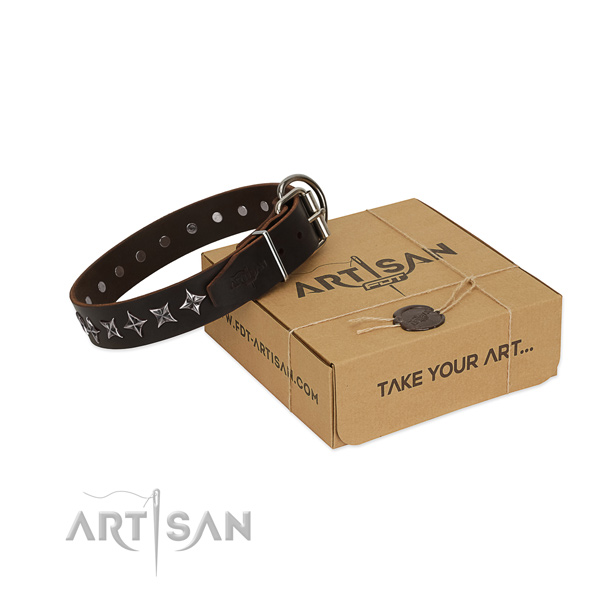 Everyday walking dog collar of durable genuine leather with decorations