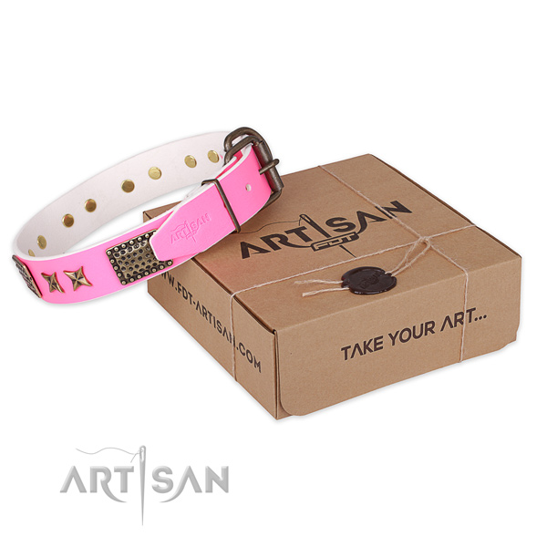 Rust-proof buckle on leather collar for your lovely canine