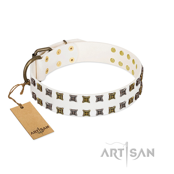Top rate leather dog collar with studs for your pet