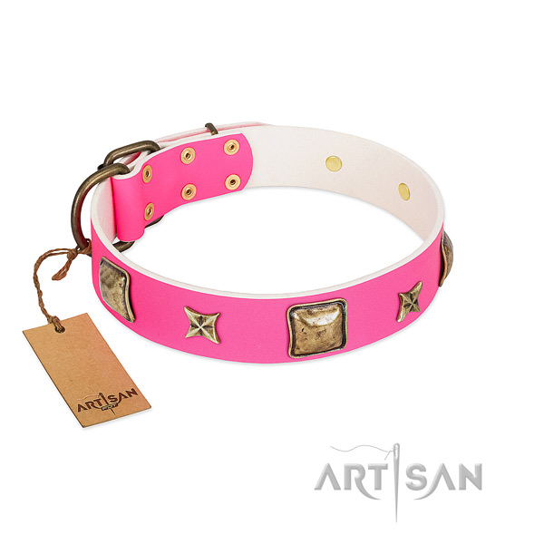 Natural leather dog collar of gentle to touch material with exquisite adornments