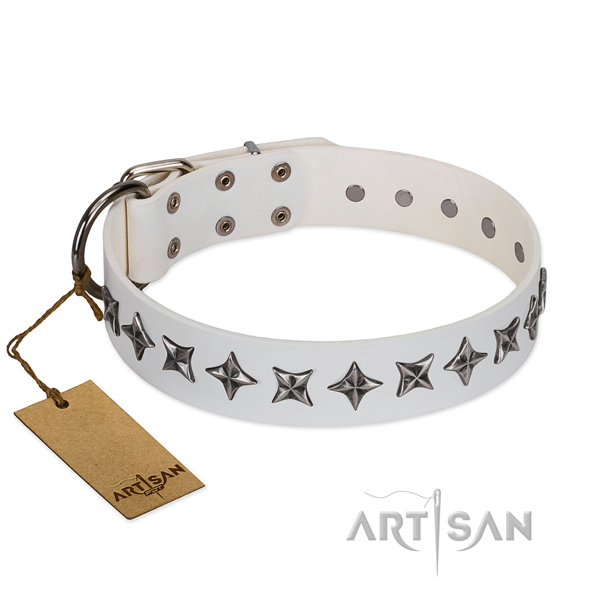 Comfy wearing dog collar of best quality genuine leather with adornments