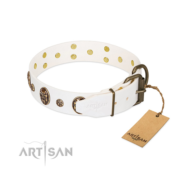 Corrosion resistant traditional buckle on full grain natural leather dog collar for your canine