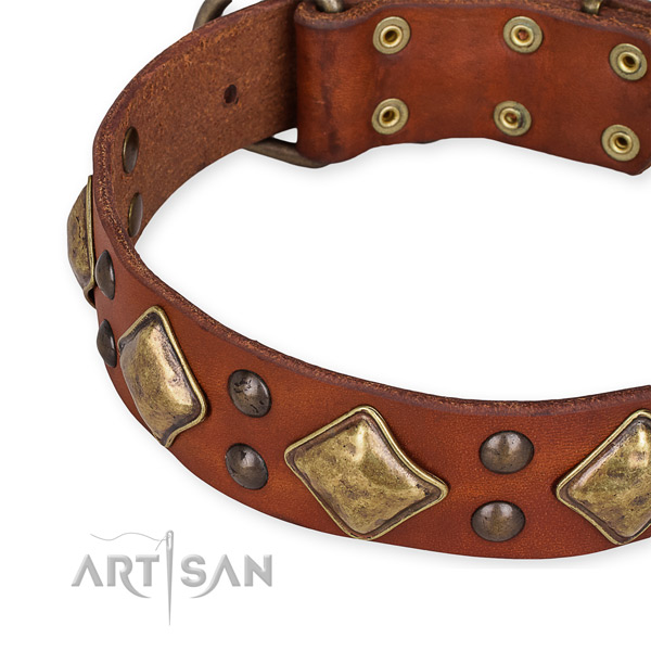 Full grain leather collar with reliable fittings for your stylish doggie