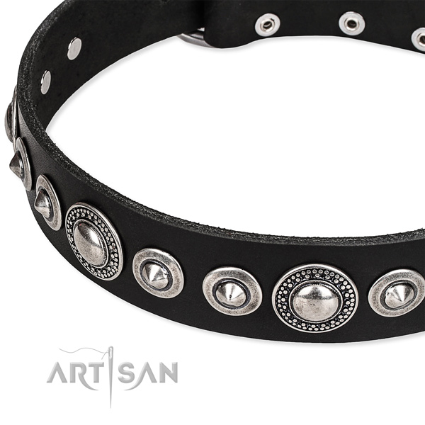 Comfortable wearing adorned dog collar of strong full grain natural leather