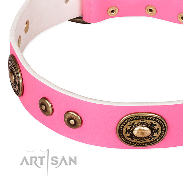 Natural genuine leather dog collar made of reliable material with decorations