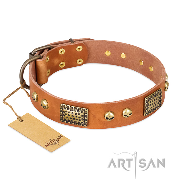 Easy wearing full grain natural leather dog collar for stylish walking your four-legged friend