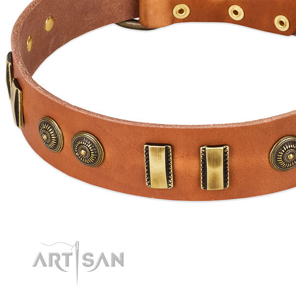 Strong adornments on full grain genuine leather dog collar for your pet