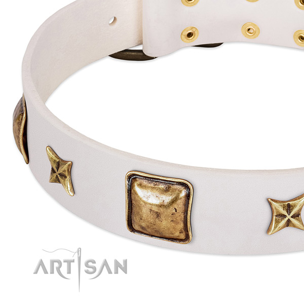 Strong studs on natural genuine leather dog collar for your four-legged friend