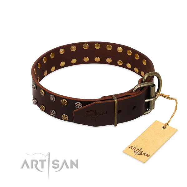 Everyday walking full grain natural leather dog collar with incredible embellishments