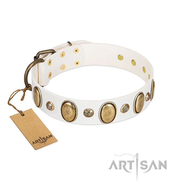 Natural leather dog collar of quality material with exceptional adornments