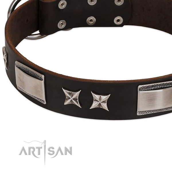 Amazing collar of natural leather for your attractive four-legged friend