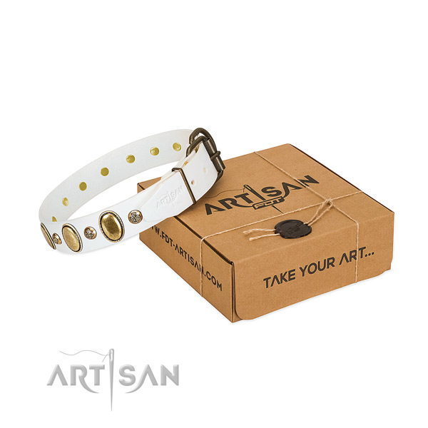Studded natural leather dog collar with durable fittings
