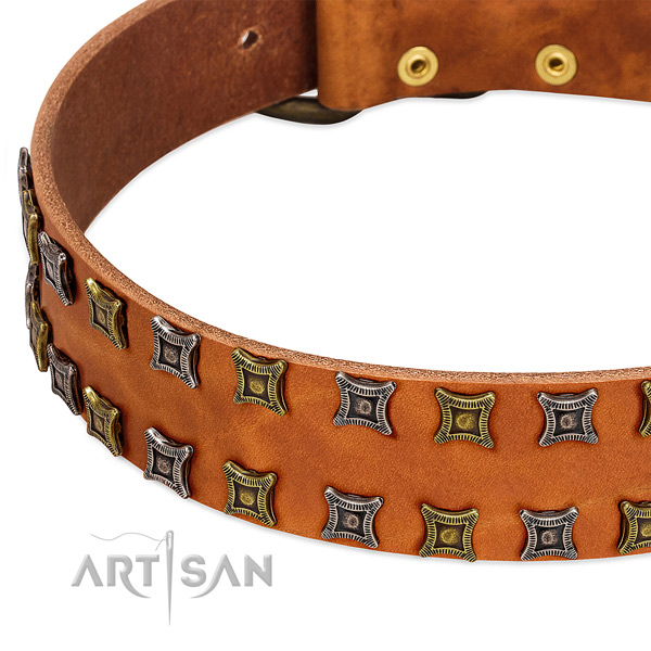Top rate full grain genuine leather dog collar for your impressive canine